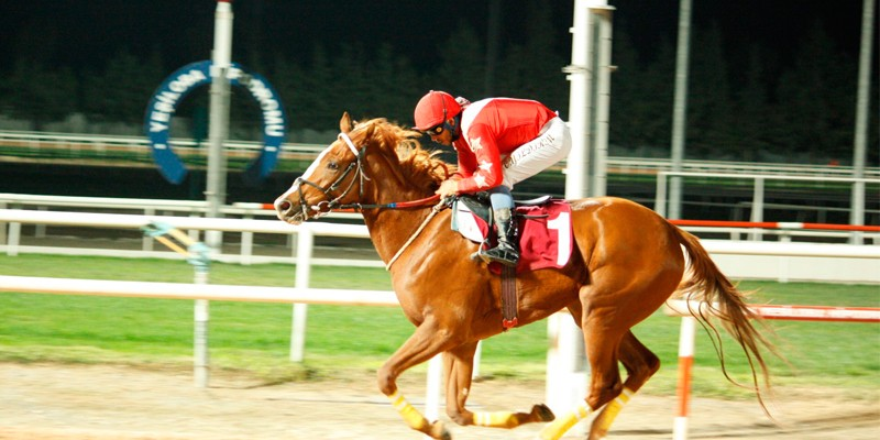 Karataş Belediyesi Koşusu'nu HOPEFUL kazandı