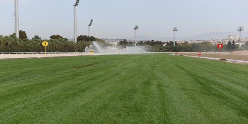 TJK'dan Sonbahar yarış sezonu çim pistte start alacak at sayısı hakkında duruyu