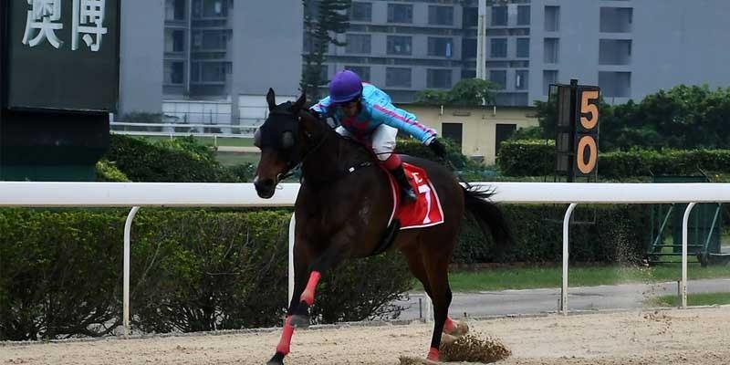 Macau'da düzenlenen TJK Koşusu'nu DANNY CHOICE kazandı
