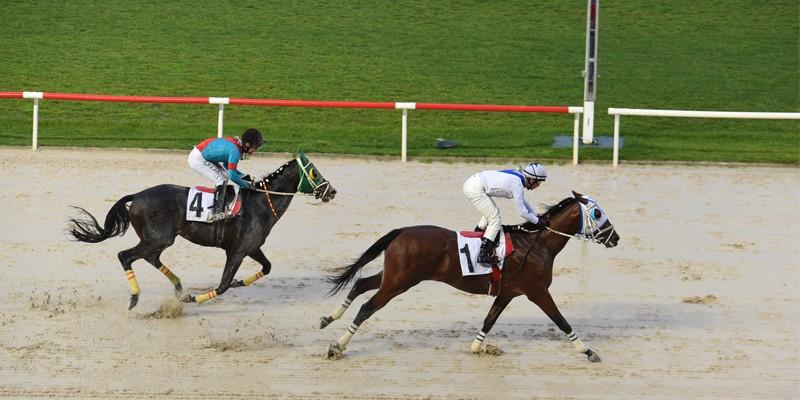 Kubilay Koşusu'nu CAN DADAŞ kazandı