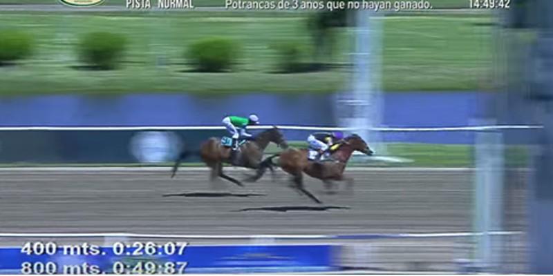 Arjantin'de düzenlenen TJK Koşusu'nu ENTROPIA kazandı