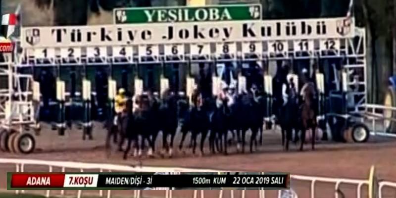 22 Ocak Salı Adana Yarışlarında M.S.Çelik At binmeme cezası almış olup