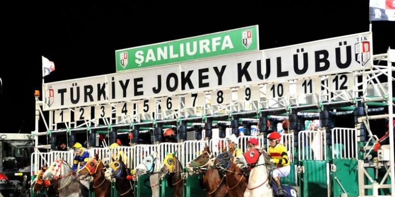BECERİKLİHAN 11 günde 3. yarışında 28 Şubat Şanlıurfa Hipodromun'da Yeter artık dedi.