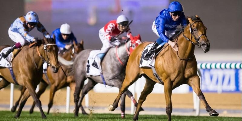 Dubai World Cup 7.gün koşuları gerçekleştirildi