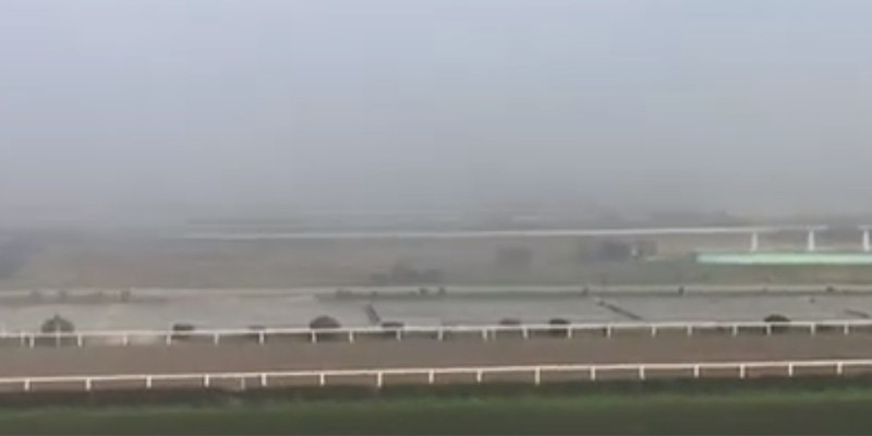 İstanbul Yarışları Yoğun sis