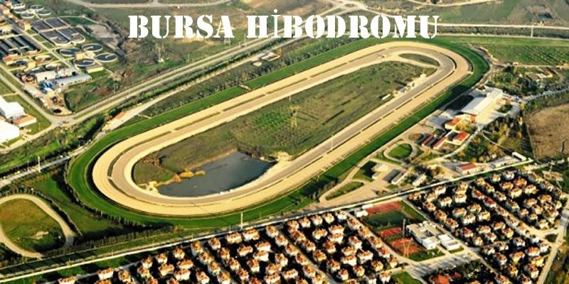 """6 Mart Osmangazi Hipodromu""""nda  hatalı start çıkışından dolayı yarış komiserleri nasıl bır ceza verdi?"""