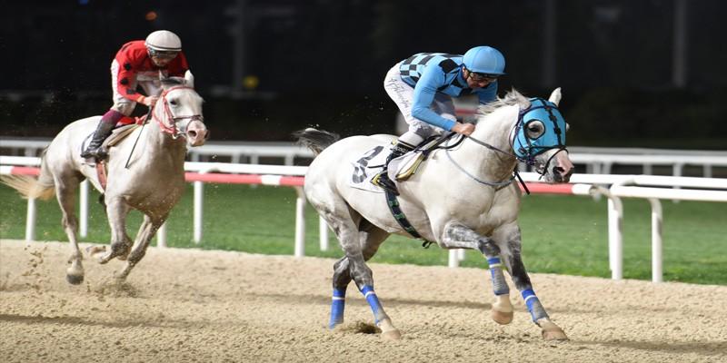 Bildenhan 21 günde İzmir, Adana, İzmir 3. Yarış üst üste kazanma başarısı gösterdi