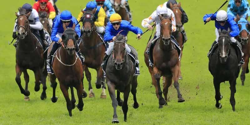 Godolphin ekürisi (Gr-1)Golden Slipper Stakes'de üçlü bahis yaptılar
