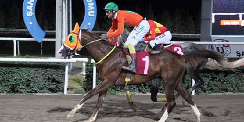 Müslüm Tumbul koşusunu Dizdar Mert Jokey Necmi Altın ile kazandı.