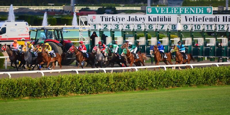 İNVINCIBLE BABY Ahmet Çelik ile yarışı neden 3 bitirdi