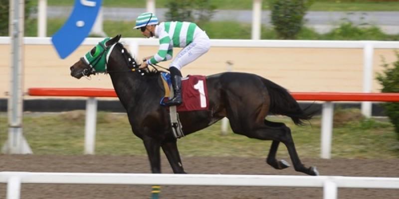 Birçok jokey ve atın yetişmesinde katkısı bulunan eski jokey Burhan Şenemgen Koşusu'nu  GRASHOF Gökhan Kocakaya ile kazandı