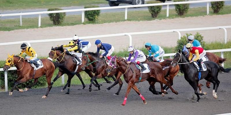 19 Mayıs Koşusunu FİNESSE  güle oynaya kazandı