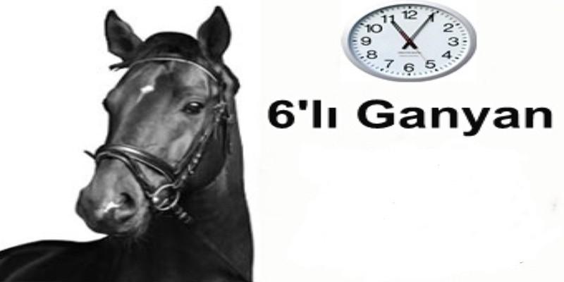 Tüyolar Hergün Kazandırmaya devam ediyor,4 Favori,2 tane 3 At ile İstanbul altılısını buldu Yamanlarbeyi için ne dedi ?