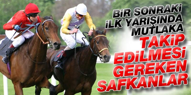 Bir Sonraki İlk Yarışında Mutlaka Takip Edilmesi Gereken Safkanlar.8 Haziran Cumartesi Ankara Hipodromu