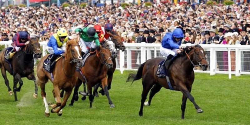 Royal Ascot yarış festivali tamamlandı