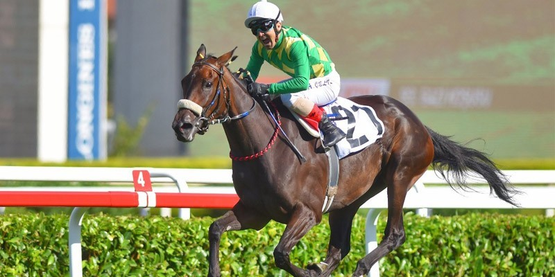 """""""1371 safkanım var"""" diyen Arif Kurtel'in bu atlar ve 93.Gazi Koşusunu kazanan THE LAST ROMANCE için aldığı tarihi karar nedir?"""