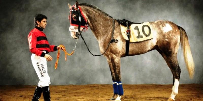 Jokey Halis Karataş nezaman at binmeye başlıyacak
