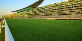 Dubai'de bugün yapılacak koşular seyircisiz izlenecek