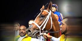 Dünyanın en büyük ikramiyesi olan 20 milyon dolarlık yarışın kazanma heyecanı, sevinci.