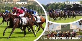 30 Mayıs Cumartesi günü Dieppe, Dresden ve Gulfstream Park Hipodromları'ndaki yarışlarda toplamda 5 ALTILI GANYAN oynanacaktır