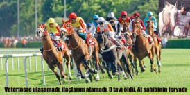 At sahibi Beşir Kaya Cumhuriyet Gazetesi'nde ATLAR ÖLÜYOR dedi