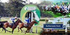 25 Mayıs Pazartesi günü Fransa LYON/PARILLY, Brezilya GAVEA ve Amerika GULFSTREAM PARK Hipodromlarındaki yarışlarda toplamda 4 ALTILI GANYAN oynanacaktır
