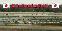 Japonya da Miha Training Canter idman merkezinin ülkemizde benzerini  görmek her at sevdalısının bir özlemidir