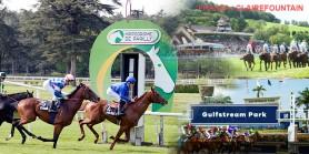 28 Mayıs Perşembe günü Fransa LYON/PARILLY, CLAIREFOUNTAINE  ve Amerika GULFSTREAM PARK Hipodromlarındaki yarışlarda toplamda 5 ALTILI GANYAN oynanacaktır