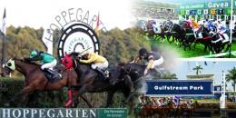 Berlin Hoppegarten yarışlarıyla başlayacak Pazar günü Brezilya Gavea ve ardından Amerika Gulfstream Park yarışları ile sona erecektir
