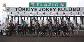 ZAFER MEYDANI  vekili Uğur Zafer EĞİLLİ jokey Caner Tepe hakaret etmekten 1.124 TL para cezası aldı.