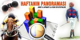 01.01.2020 - 16.08.2020 Tarihleri Arası Türkiye Geneli Jokey - Apranti - Aygır İstatistikleri