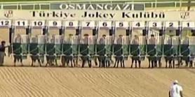 Türk Yarışçılığı G3 Koşusu hiç 58 puanın altında 11 tay ile birlikte koşmamıştır