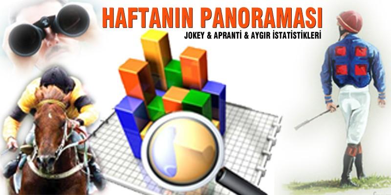 01.01.2020 - 13.090.2020 Tarihleri Arası Türkiye Geneli Jokey - Apranti - Aygır İstatistikleri