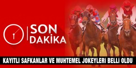 Büyük Taarruz, Fatih Sultan Mehmet ve Türkiye Jokey Kulübü koşularına kayıtlı safkanlar ve muhtemel jokeyleri