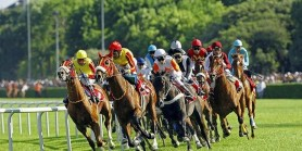 Triple Crown fovorisi Şampiyon CALL TO VİCTORY   %50 koşmama ihtimali var
