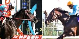 CONTRAIL ve CESUR TACT Japon yarışlarına hükmetti