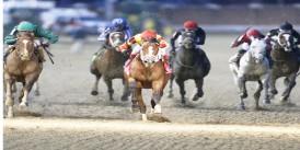 Bodemeister'ın oğlu Bodexpress'ten G1 Clark Stakes Stakes'i Jokeyi Rafael Bejerano ile kazandı