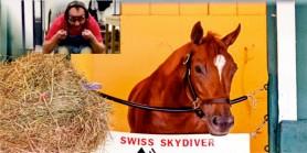 DARADEVİL'in Şampiyon kızı SWİSS SKYDİVER'dan güzel haberler var.  Jokeyler yarışırken Valeleri ne yapıyor
