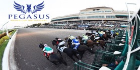 G1 Pegasus World Cup  LiderForm.com.tr TJK TV ve TAY TV'de!