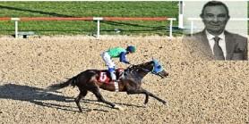 AGF%56(1) günün en güvenilen atı EL NINO neden kötü koştu sonuncu oldu.