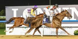 Dubai World Cup Karnavalı'nda 1. gün koşuları tamamlandı