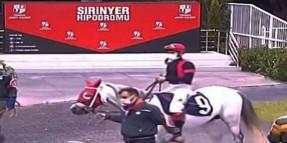 12 Şubat  Cuma günü İzmir'de SATIŞ-2 koşusunda bir safkan el değiştirdi.