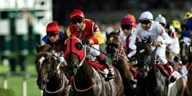 Maiden Atı açık yarış atı gibi koştu 30 boy farkla  beyaz bayrak ayna yaparak kazandı.