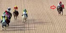 AGF %20(1) At  topal yarışı bitiriyor.Kantarması kopan At AGF %10(5) Yarışı birakıyor Ne koşuymuş be.