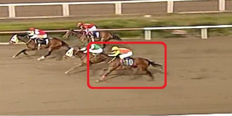 Öyle bir yarış çıkardı ki İlk Şartlı ve Maiden yarışında kazanacak güçte görüldü