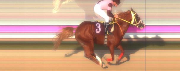 Satılık TURBO Yavrusu Yarış Atı Bugün Al Yarın Koş