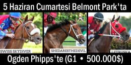 5 Haziran Cumartesi Belmont Park'ta Ogden Phipps'te (G1 • 500.000$) TJK aygırlarından DAREDEVIL'in 2, SUPER SAVER'in ise 1 yavrusu koşacaktır