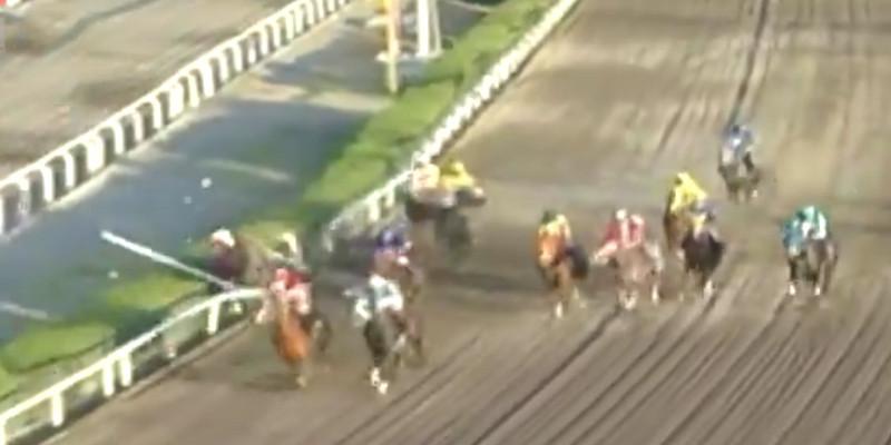 Koşu içinde bir atın başına gelebilecek en üzücü kaza  maahalesef yine bizim ülkemizde oldu