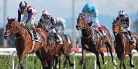 Gelişmiş ülkelerde at yarışı basınının medyadaki yeri