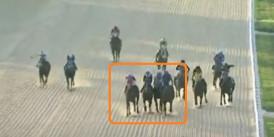 Kocaeli Kartepe Hipodrom'unda koşuya Protesto çekildi Red edildi